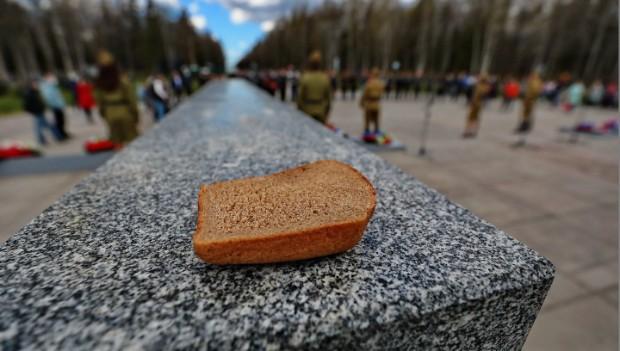 Останки убитых в годы войны детей обнаружили в Ленинградской области